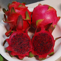 Red Dragon Fruit Seeds (Hylocereus undatus) + FREE Bonus 6 Variety Seed Pack - a $30 Value!