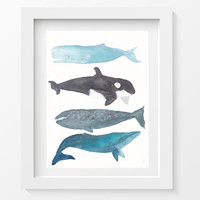 Whale Print Whale Stack Whales Art Watercolor by Littlecatdraw