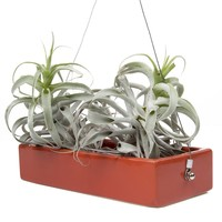 Ragna Hanging Planter