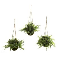 Nearly Natural 6741-S3 Eucalyptus Maiden Hair Berry Hanging Basket, Green, Set of 3