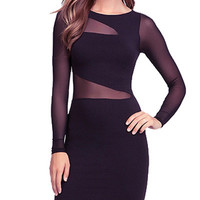 Black Long Sleeve Mesh Bodycon Mini Dress