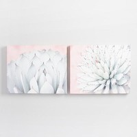 Agave Blooms by Elizabeth Urquhart Set of 2