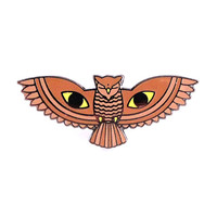 All Seeing Owl Lapel Pin