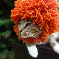 Lion Mane Cat Dog Hat -  (FULL MANE) The Lion Costume for Cats and Small Dogs - Custom Colors