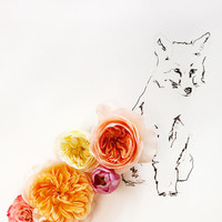 Fox and Flower No. 9890