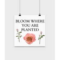 Motivational Poster/Bloom Where You Are Planted/ Novelty Wall Art/Home Decor/Wall Hanging