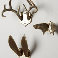 Airen Grove Hook Rack by Anthropologie in Ant Brass Size:
