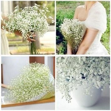 Gypsophila Baby's Breath Artificial Fake Silk Flower Plant Home Wedding Decor 1 Pack (2Pcs,6Pcs,12Pcs,24Pcs) [7982970631]