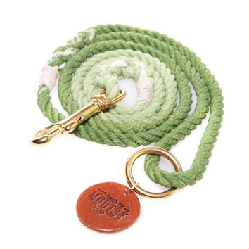 Apple Green Ombré Rope Dog Leash