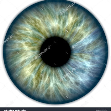 Illustration of a blue and green human iris