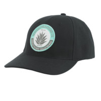 Agave Badge Hat