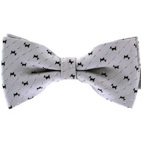 Tok Tok Designs Pre-Tied Bow Tie for Men & Teenagers (B36, Silver)