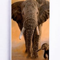 iPhone 5S Case - Rubber TPU Cover with African Elephant Rubber Case Design