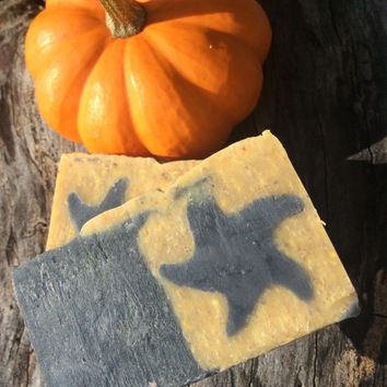 Activated Charcoal & Pumpkin Soap, organic soap, artisan soap, fall gift, detoxing, moisturizing, antioxidant