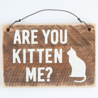 Are You Kitten Me Wood Sign Brown/White One Size For Men 26322148501