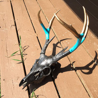 Painted deer skull