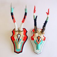 NEON CORAL & TEAL orange red black white turquoise pair geometric aztec painted deer skull antlers horns - taxidermy unusual art gift decor