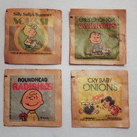 Charlie Brown and Friends Seed Packets Peanuts by KTsVersion