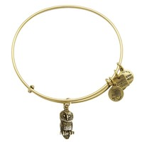 Ode To The Owl Charm Bangle
