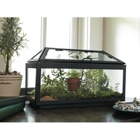 Smith & Hawken® Steel and Glass Terrarium