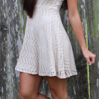 Laser Cut Skater Dress - Taupe