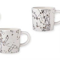 Salt and Earth Constellation Mugs, Set of 4