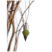 Terrarium Teardrop - With Roots