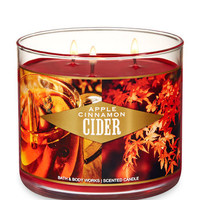 APPLE CINNAMON CIDER3-Wick Candle