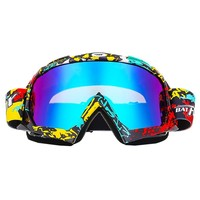Neutral Adult Ski Goggles Fog Ski Mask Glasses Ski Goggles