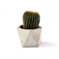 TRIDECAHEDRON  //  Concrete Succulent Planter + Candle Holder by The Armory