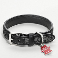 Shop Designer Dog Collars & Fancy Pet Accessories at Coach.com