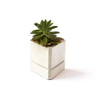PRISM  //  Concrete Succulent Planter + Candle Holder by The Armory