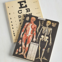 Anatomy of Charm Notebook Set by ModCloth