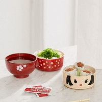 Flower Girl Bento Box   Urban Outfitters