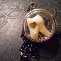 Bubble Sweet Tooth Real Human Tooth with Cavity in Candy Sprinkle Necklace