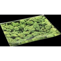 Buds Glass Tray - Shatter Resistant