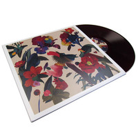 Washed Out: Paracosm Vinyl LP