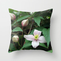 summer pink flower on vine. backyard floral photography. Throw Pillow by NatureMatters