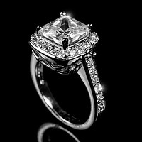 Clarissa Cushion Halo Engagement Ring | 4.5ct