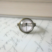 Dragonfly Glass Cabochon Ring on Antique Bronze - Vintage Style Jewelry, Glass Cabochon Jewelry