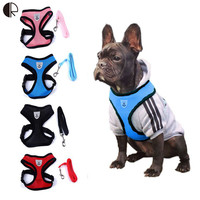 Cute Small dog Harness Leash
