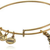 "Alex and Ani ""Bangle Bar"" Buddha Rafaelian Gold Finish Expandable Wire Bangle Bracelet"
