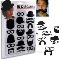 In Disguise Photo Magnet Set