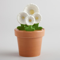 Daisy Flowerpot Measuring Set - World Market