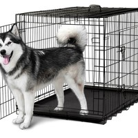 """Pet Kennel Cat Dog Folding Steel Crate Playpen Wire Metal Cage 48"""""""
