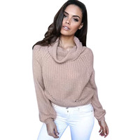 Autumn Winter Long Sleeve Knitted Pullover Loose Sweater Women Turtle Neck Short Jumper Knitting Blouse Top Sweaters Plus Size