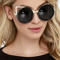 House Cat Gold and Black Sunglasses