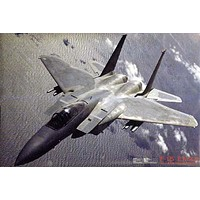 F-15 Eagle Military Fighter Aircraft Poster 24x36
