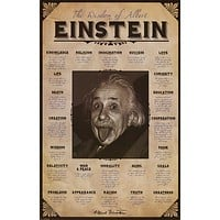 Albert Einstein Topical Wisdom Quotes Poster 24x36