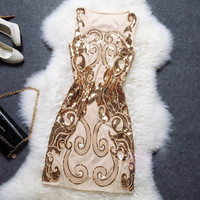 Classic Embroidery Sequin Night Club Evening Dress